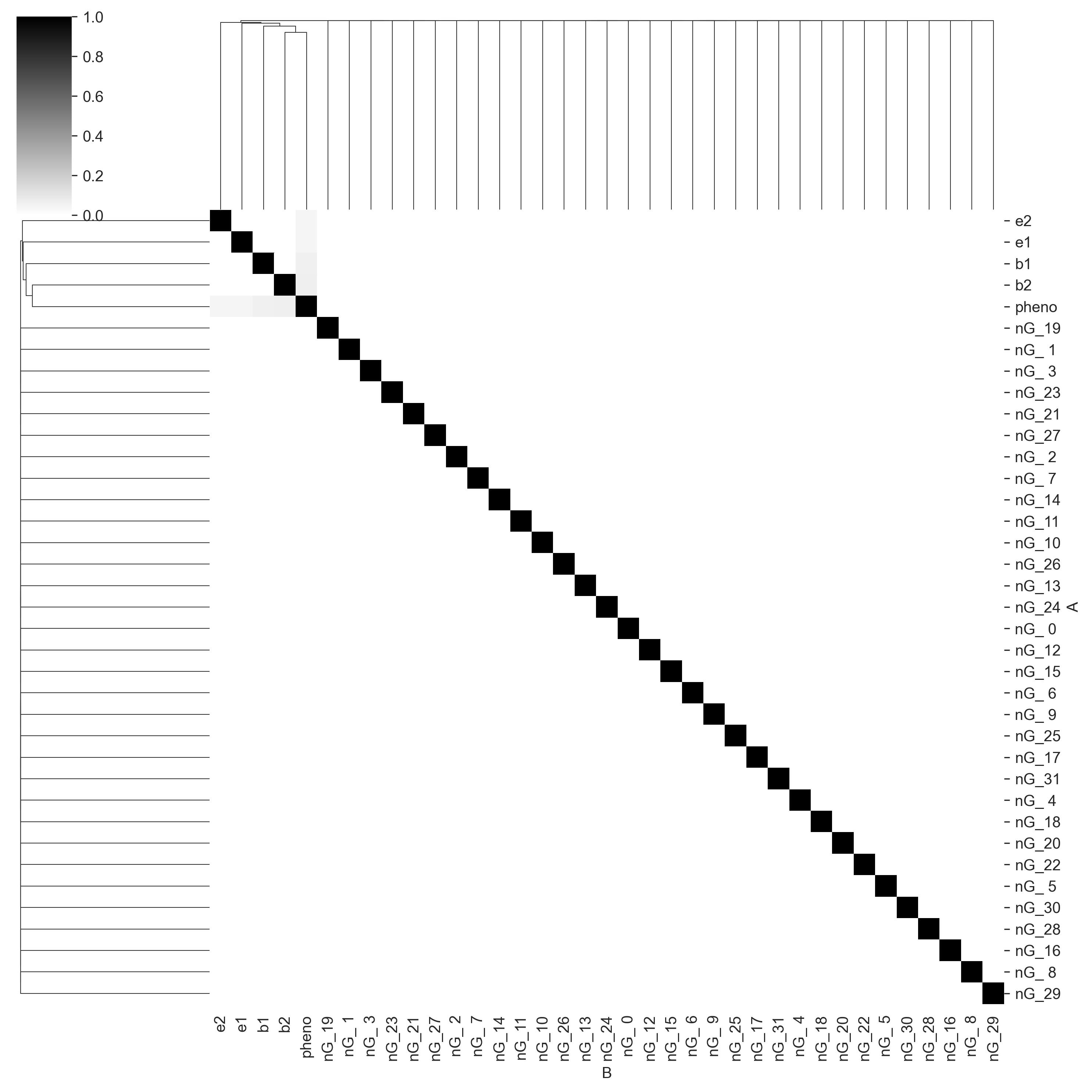 Mutual information matrix